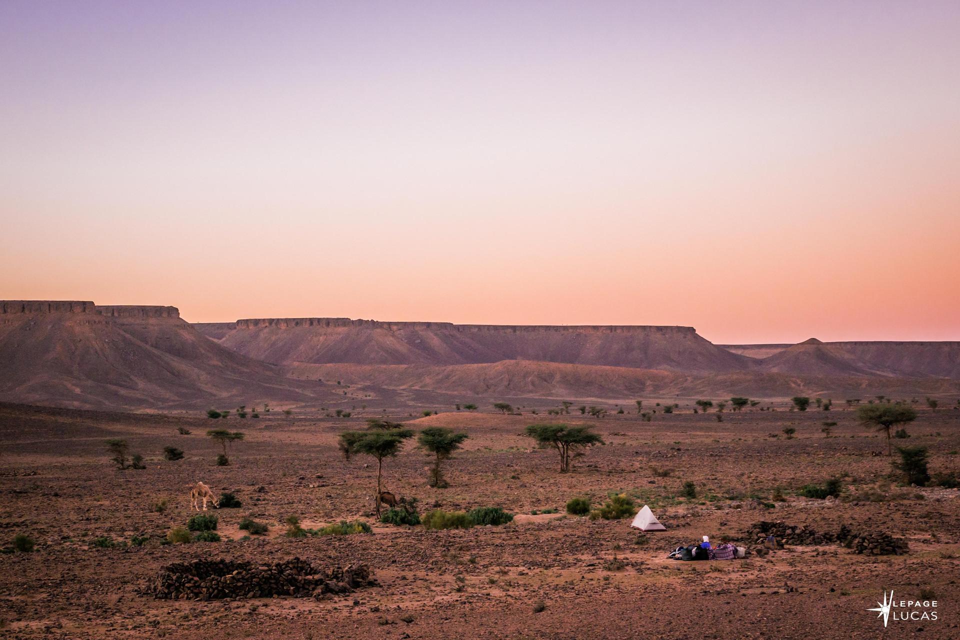 Sahara-15.jpg