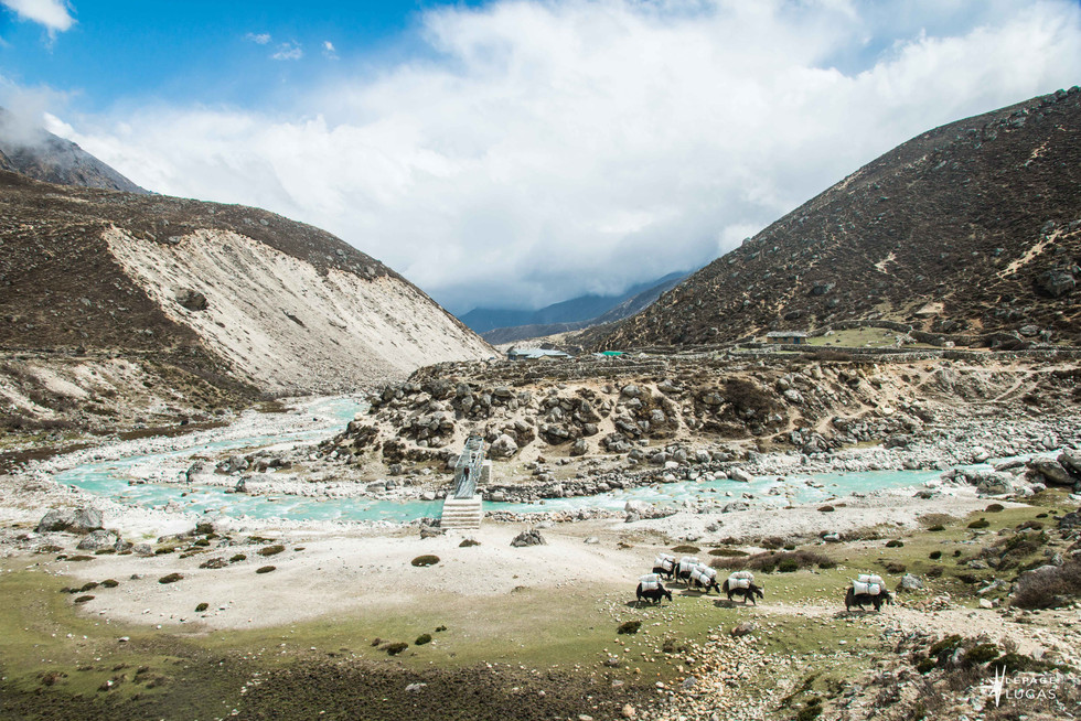 Himalaya-61.jpg