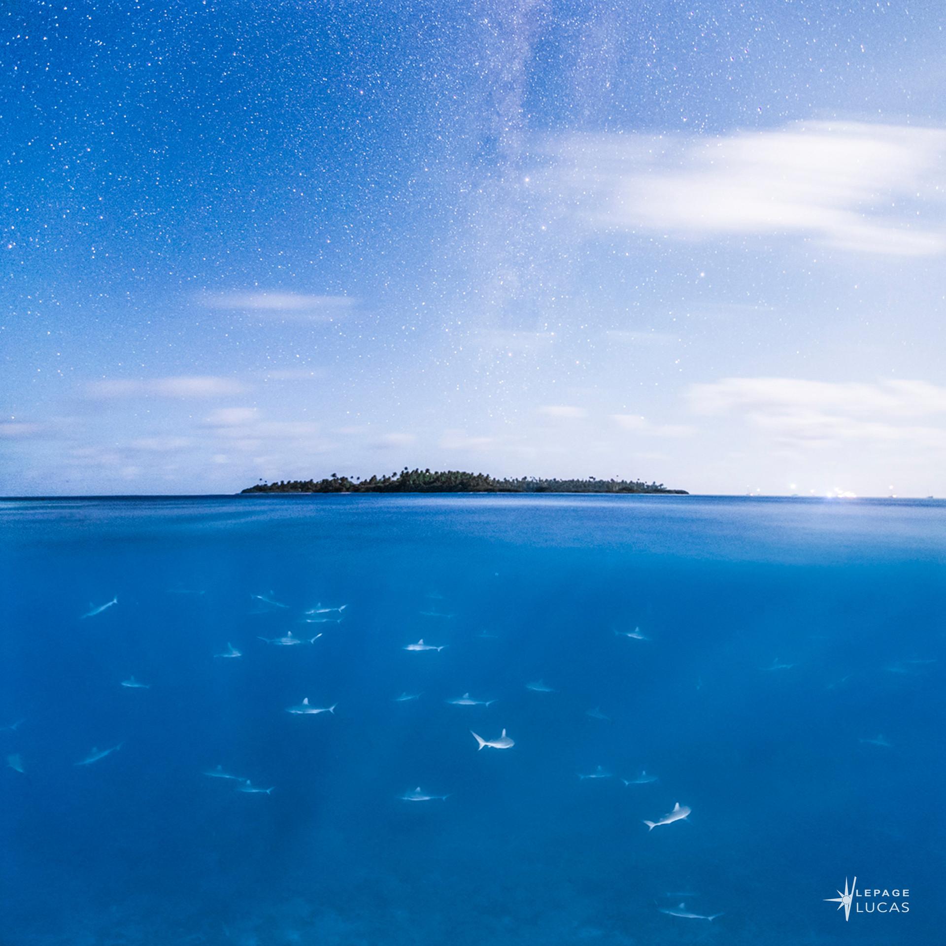 Pacifique-58.jpg
