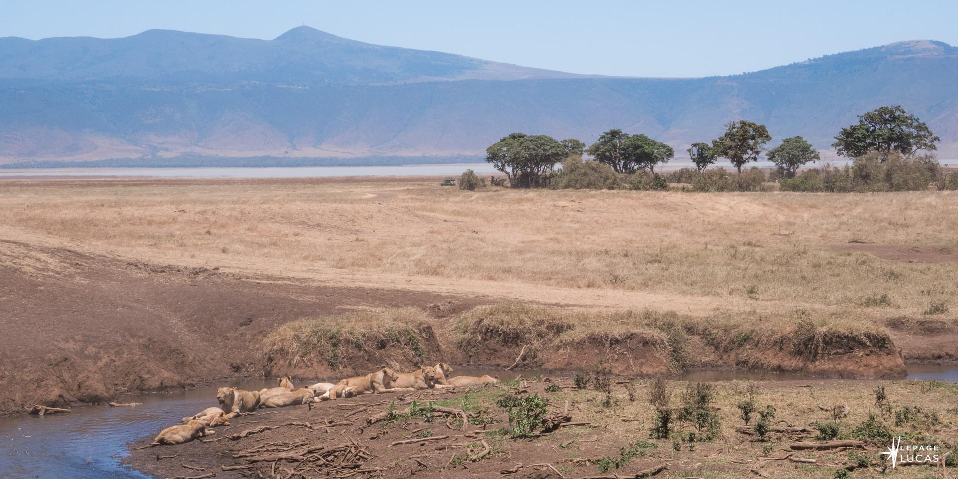 Afrique-22.jpg