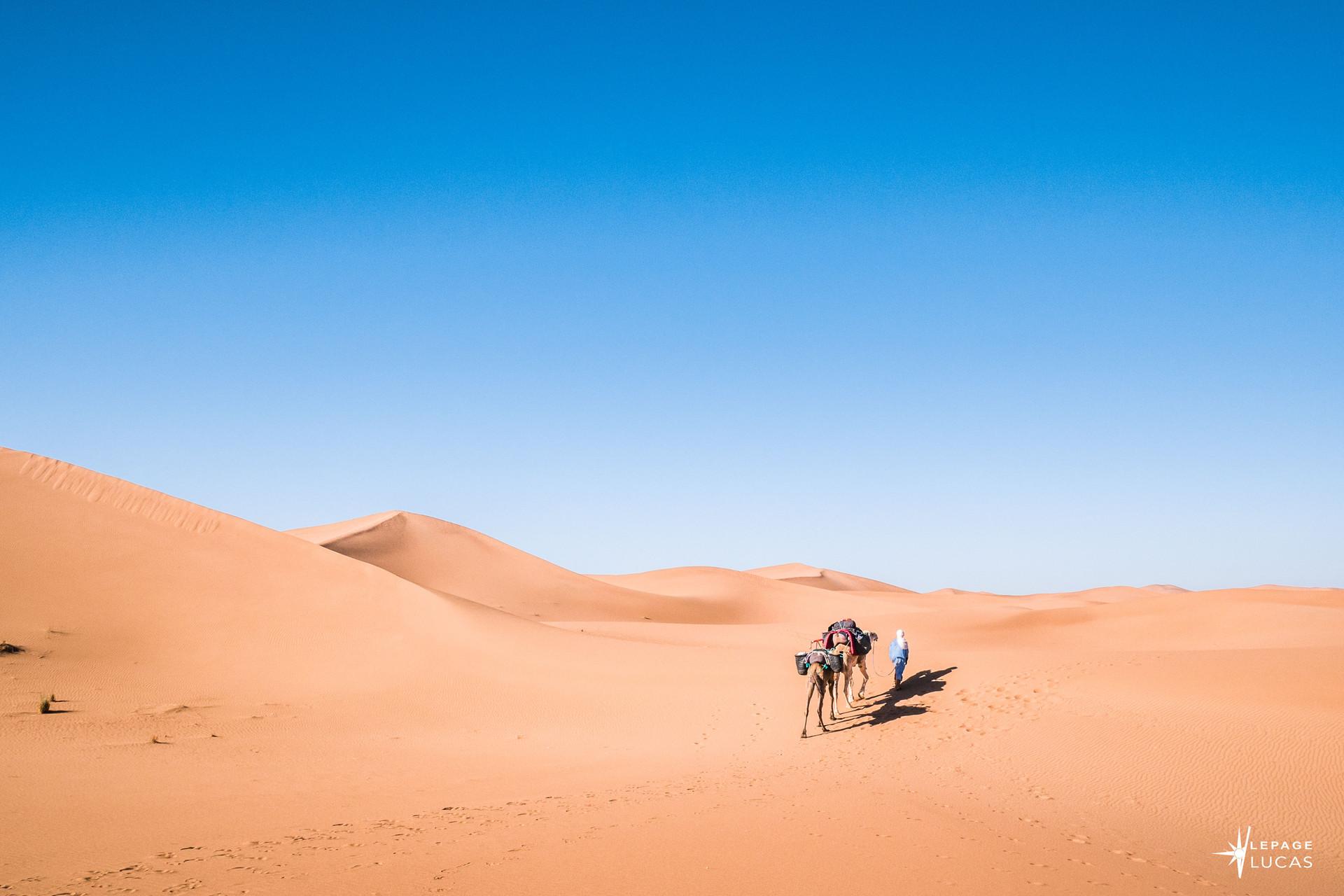 Sahara-25.jpg