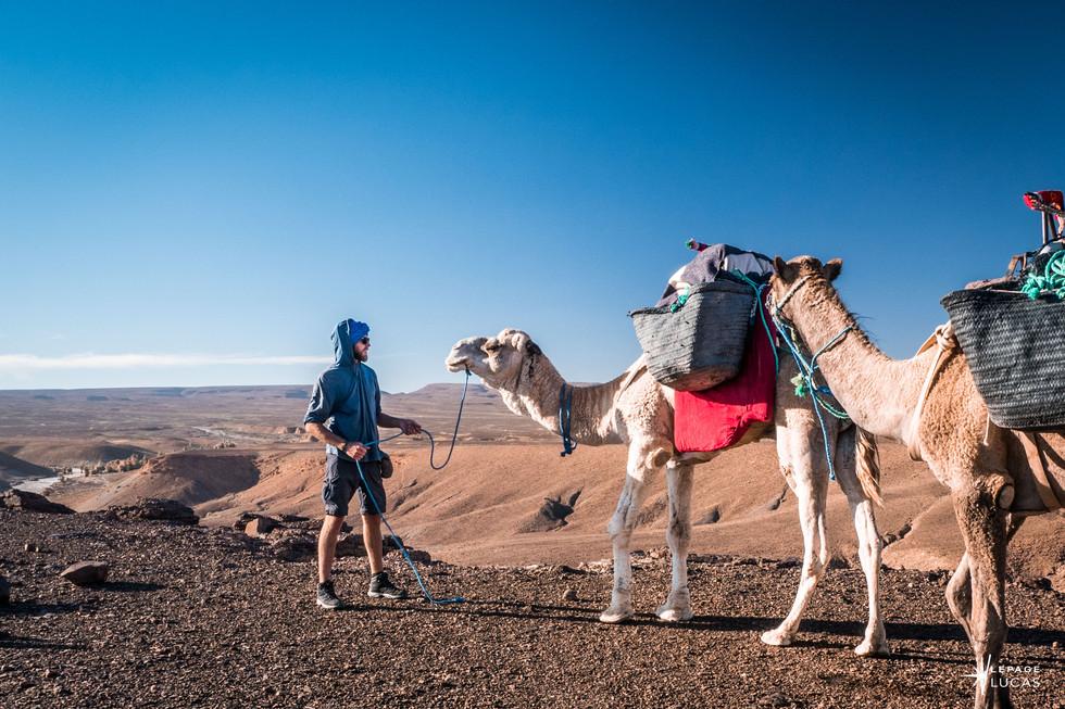 Sahara-19.jpg