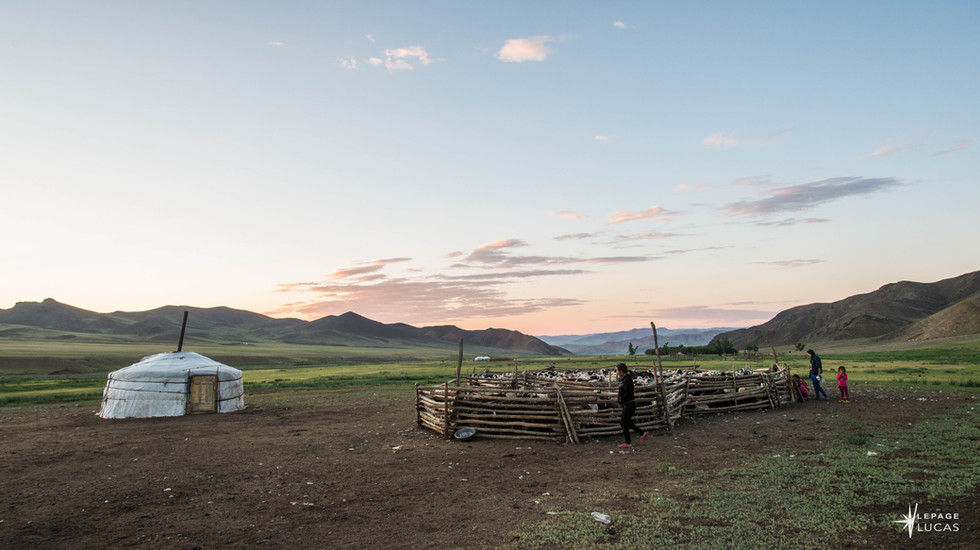 Mongolie-25.jpg