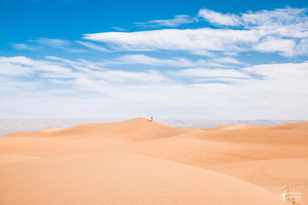 Sahara-30.jpg