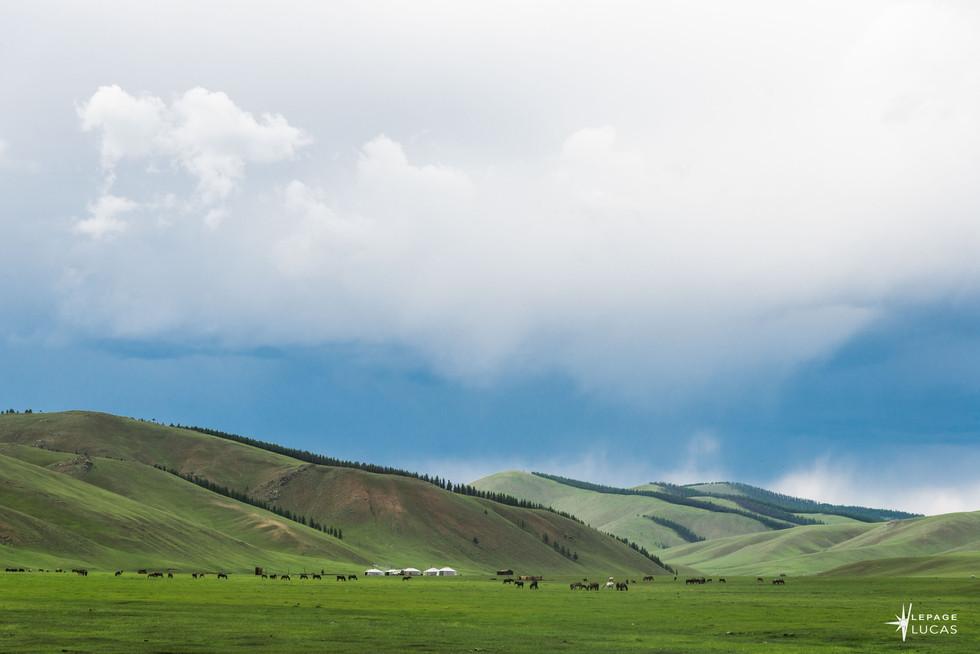 Mongolie-110.jpg