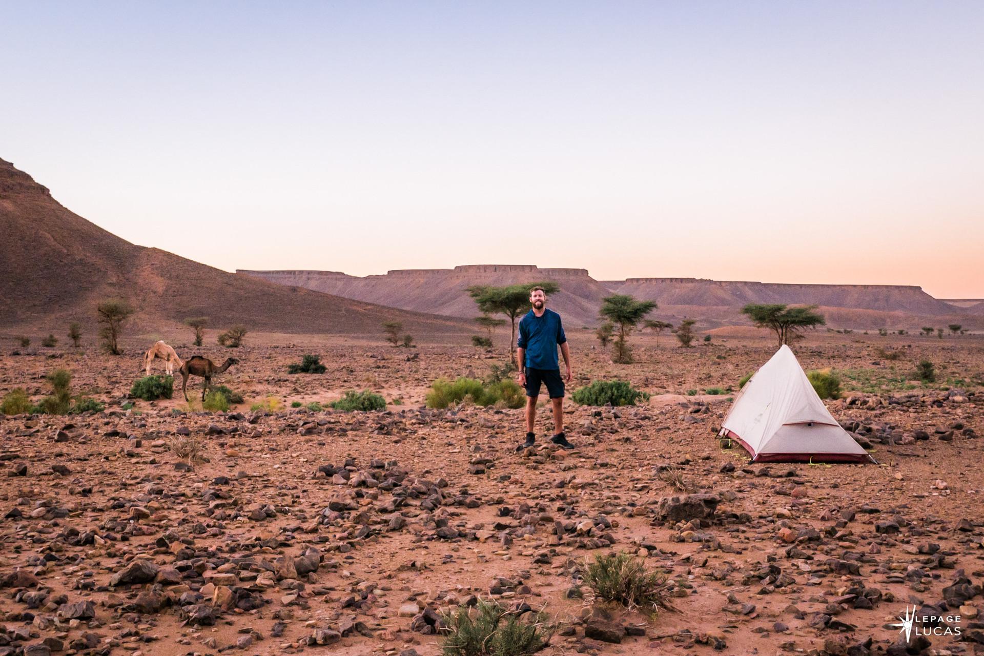Sahara-14.jpg