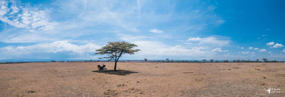 Afrique-36.jpg