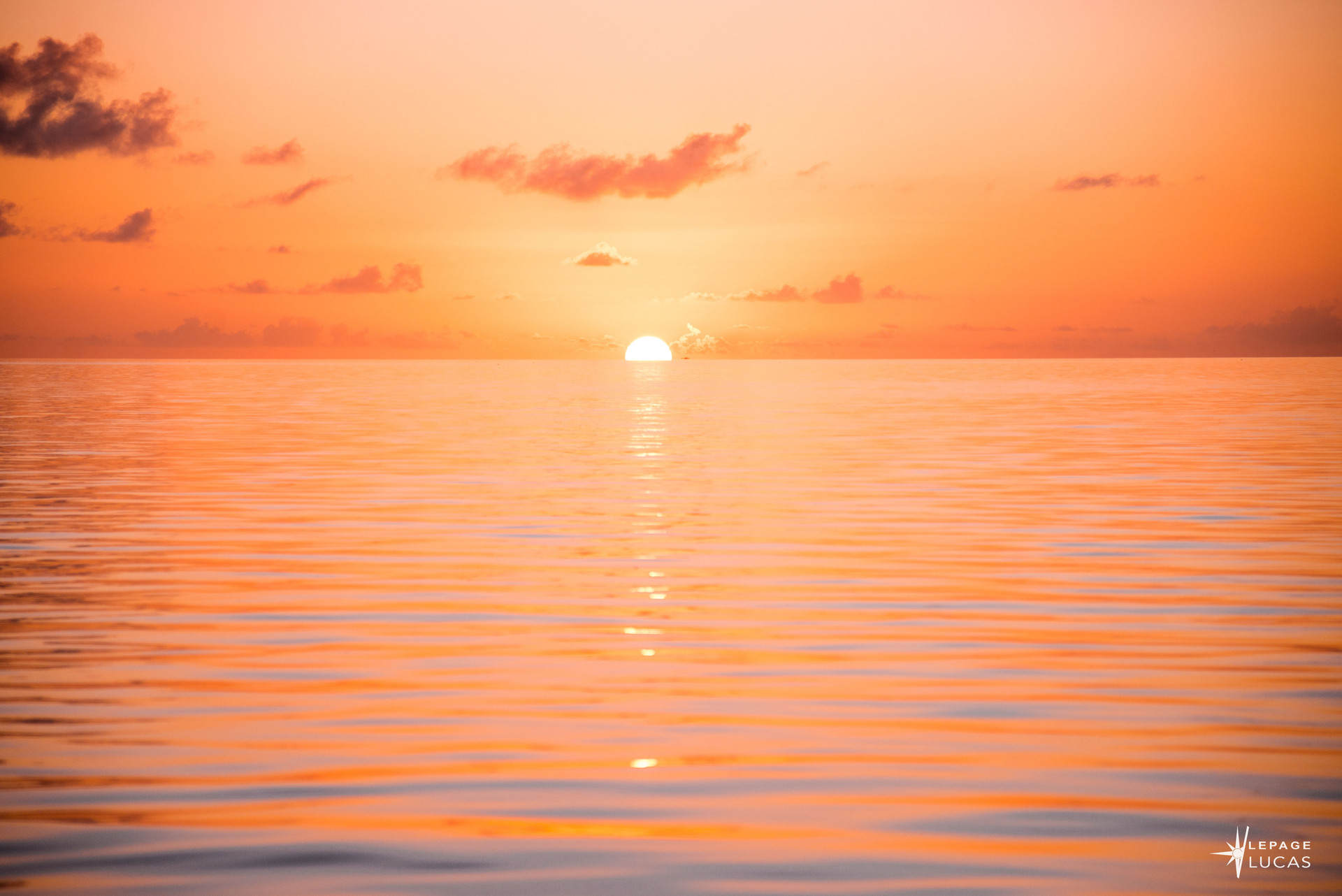Pacifique-14.jpg