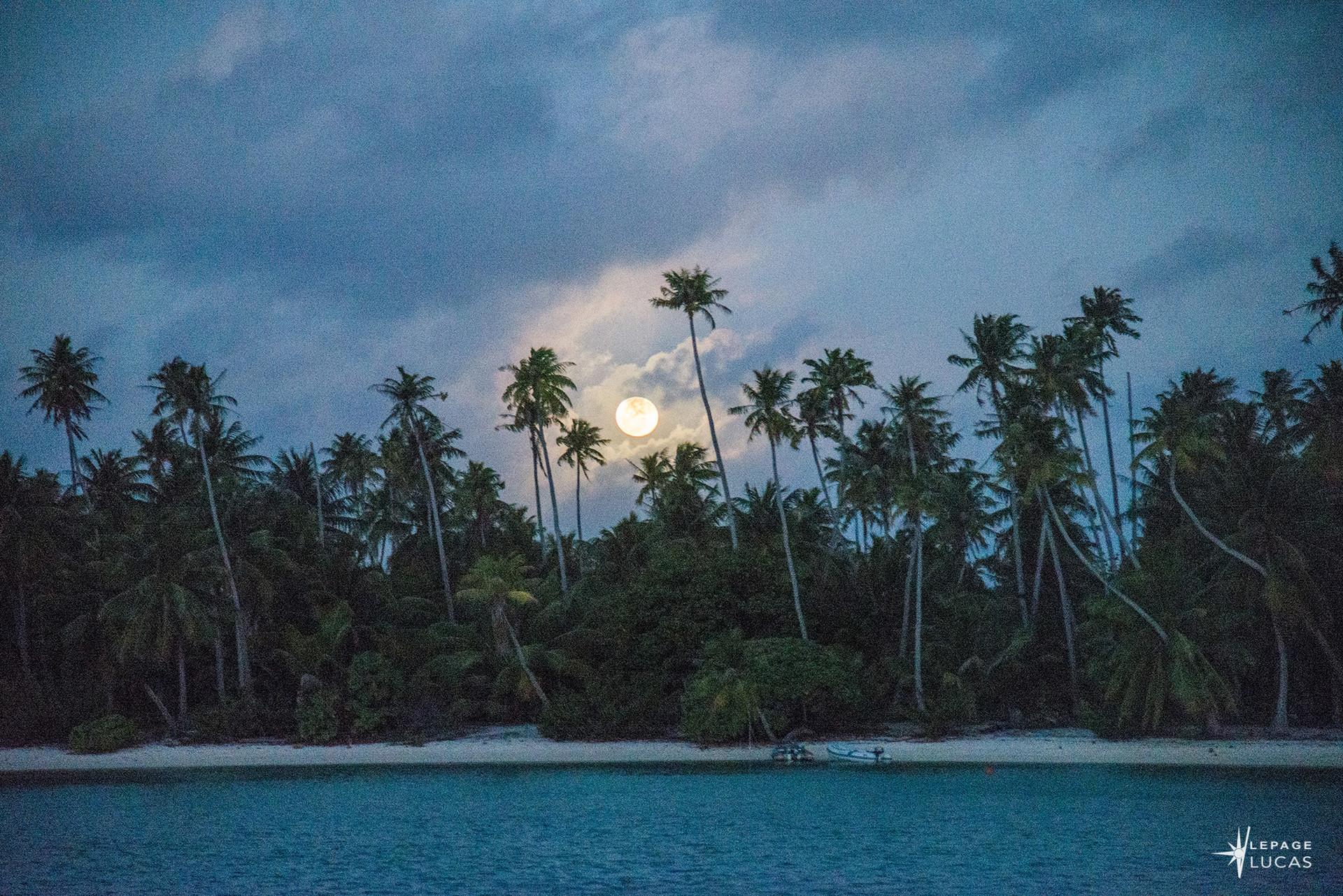 Pacifique-60.jpg