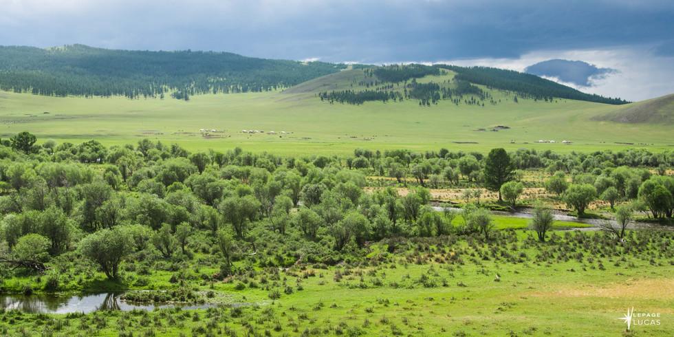 Mongolie-75.jpg