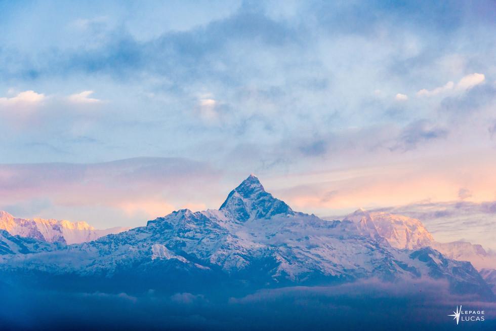 Himalaya-16.jpg
