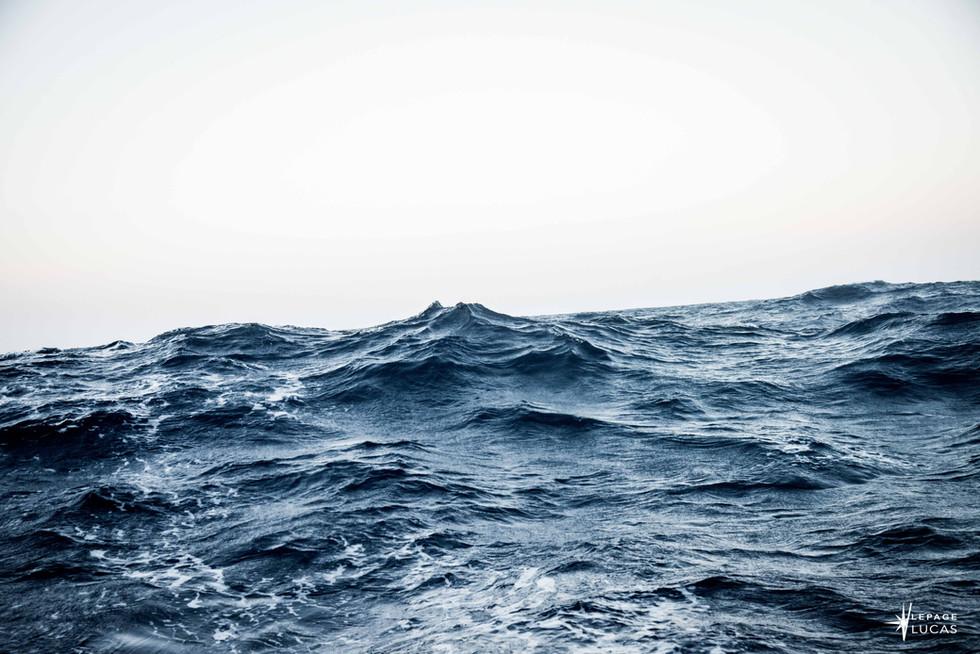 Pacifique-1.jpg
