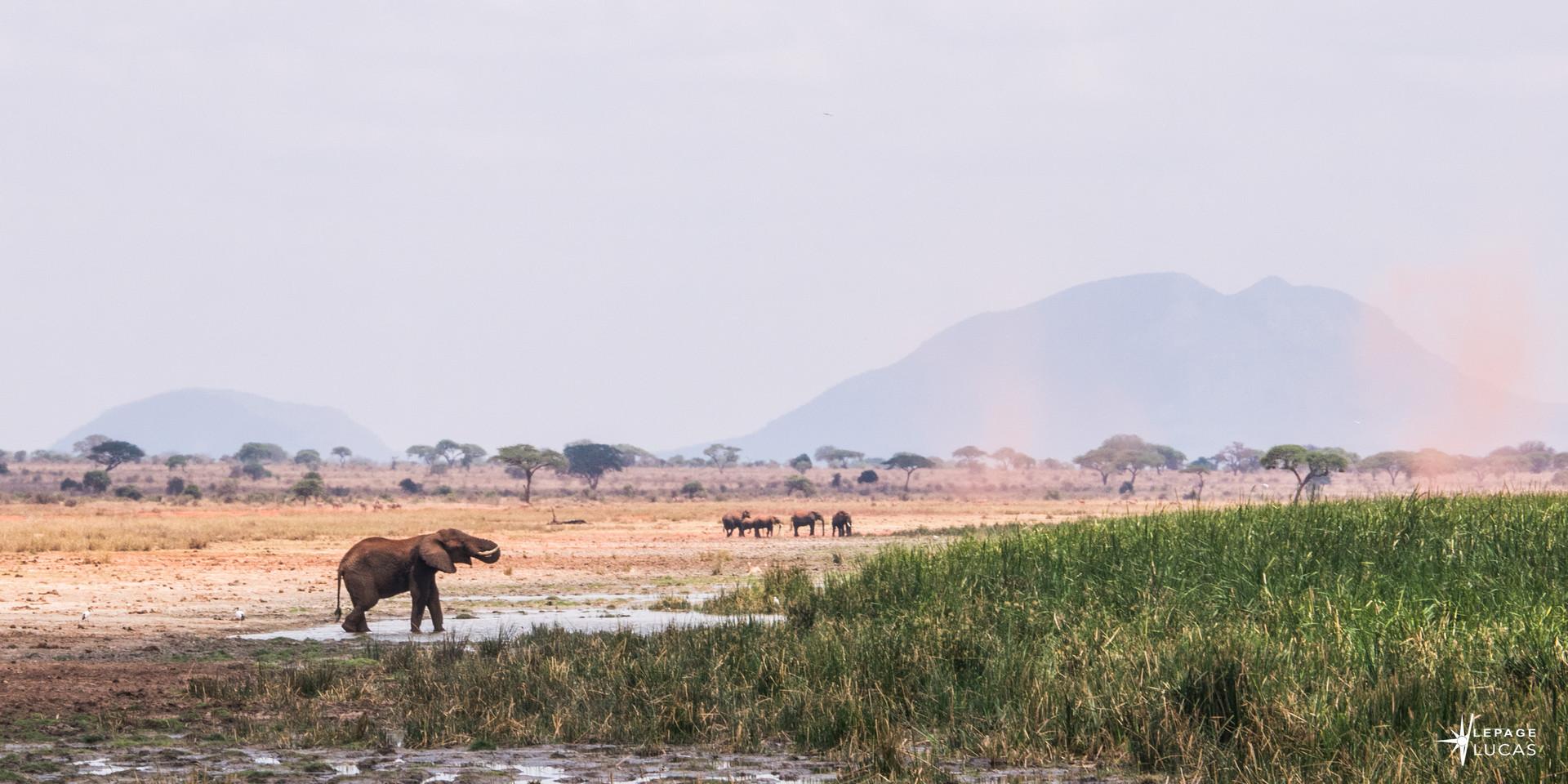Afrique-37.jpg