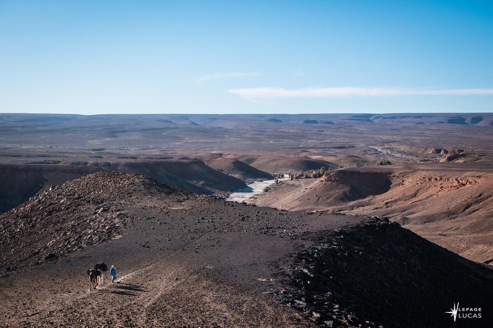 Sahara-18.jpg