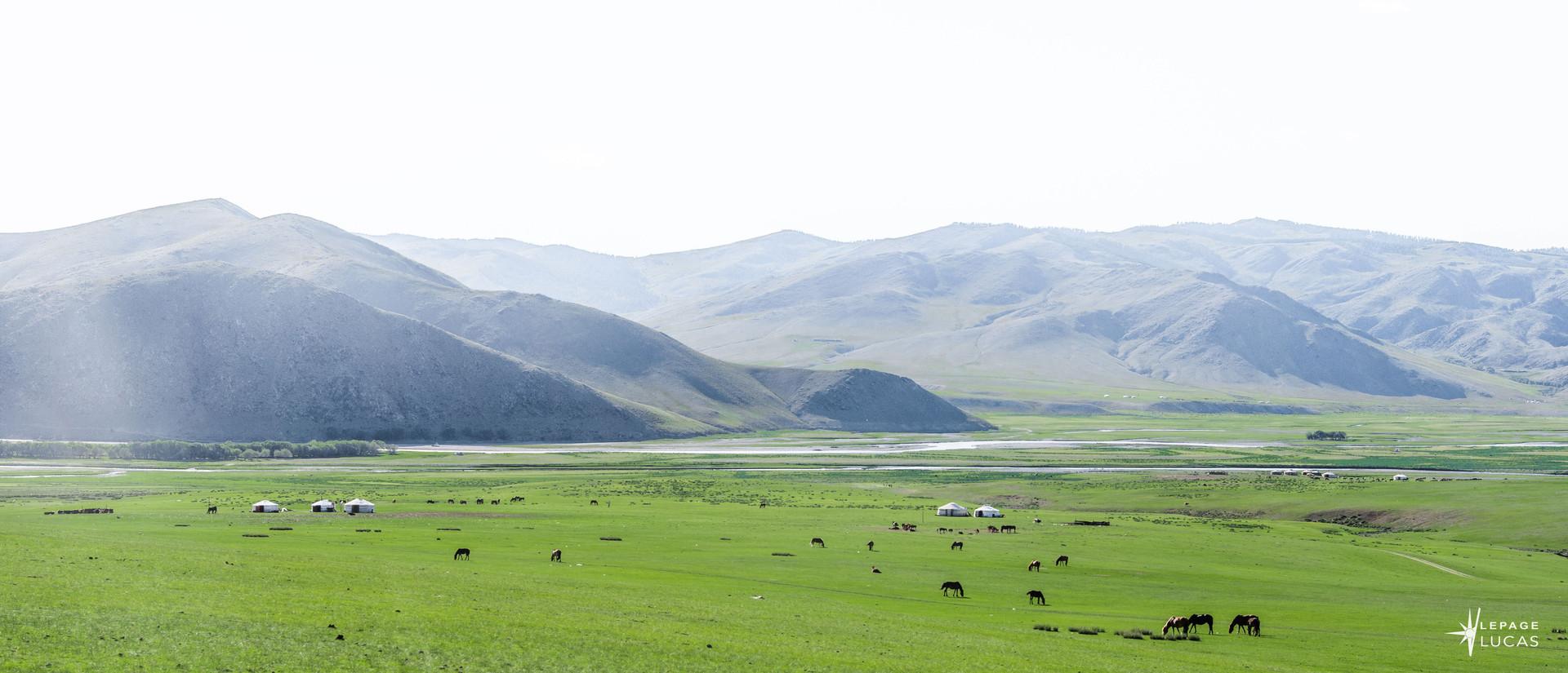 Mongolie-84.jpg