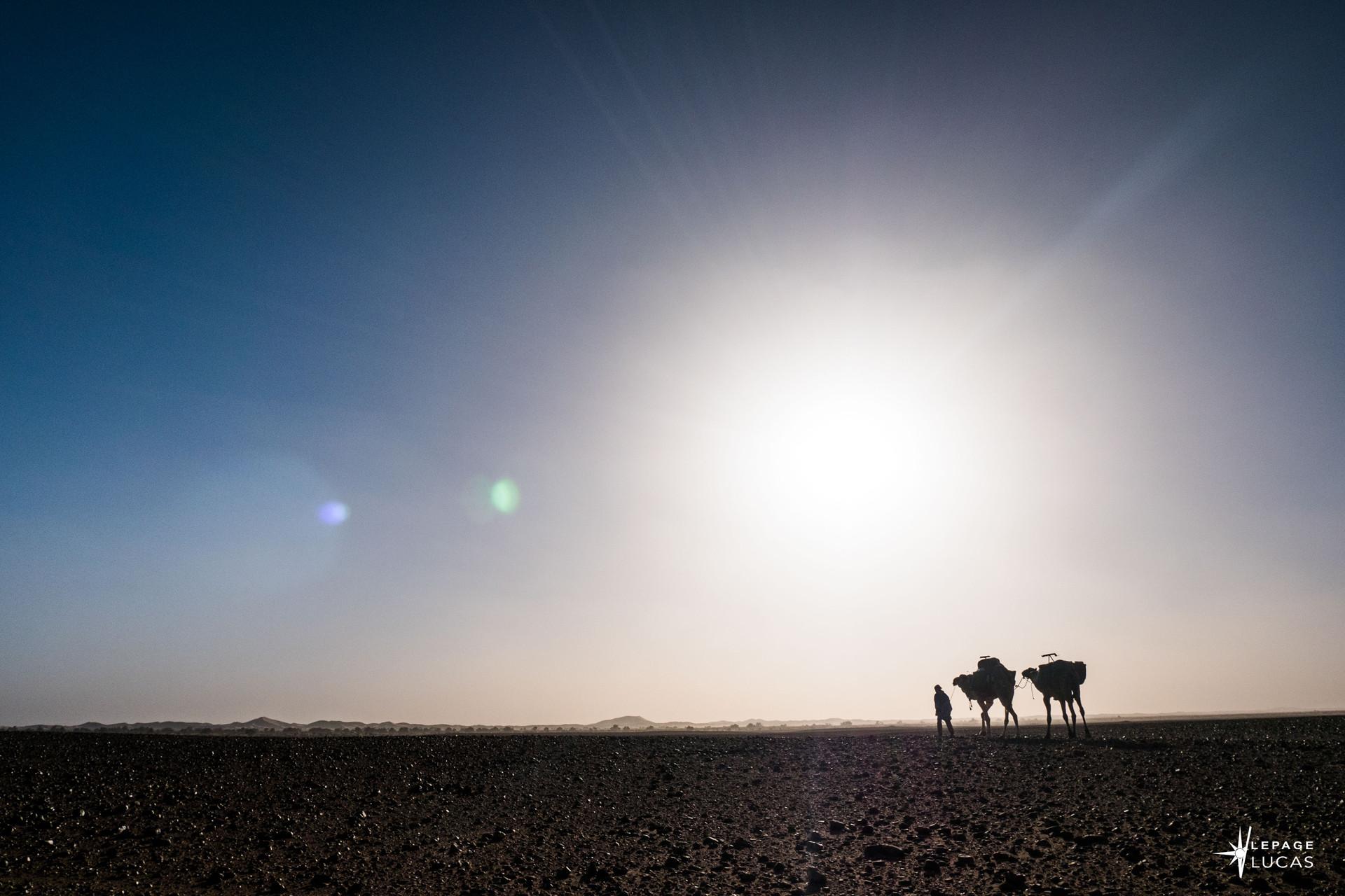 Sahara-24.jpg