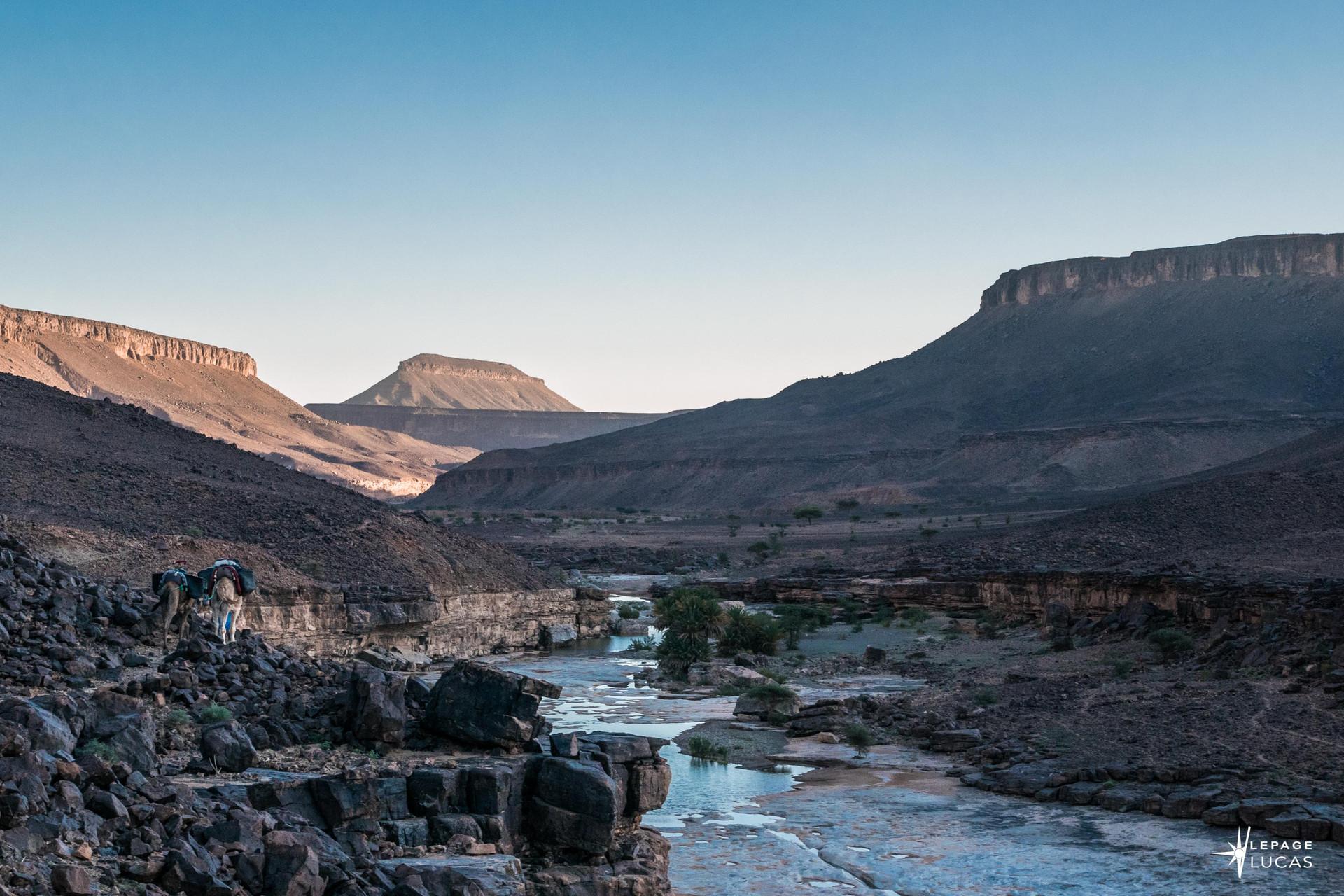 Sahara-21.jpg
