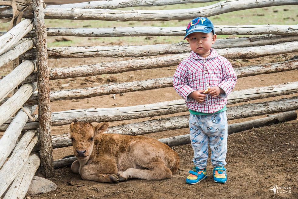 Mongolie-20.jpg