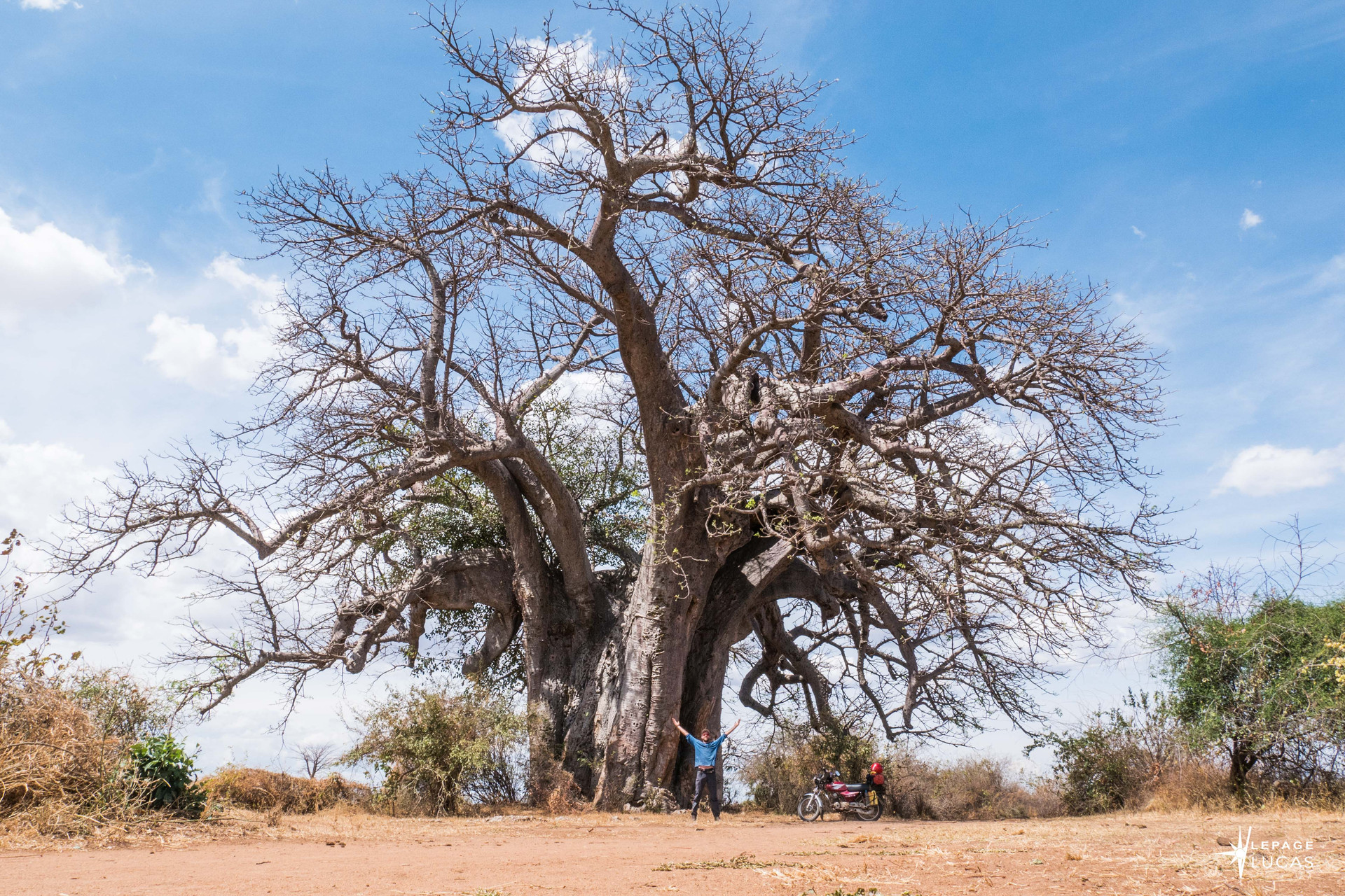Afrique-17.jpg