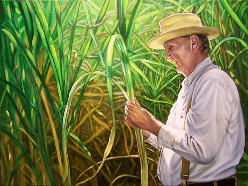 """The Old Cajun Sugar Cane Farmer"""