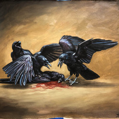 """Love and Death among the corvids"""