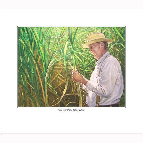 """The Old Cajun Cane Farmer"""