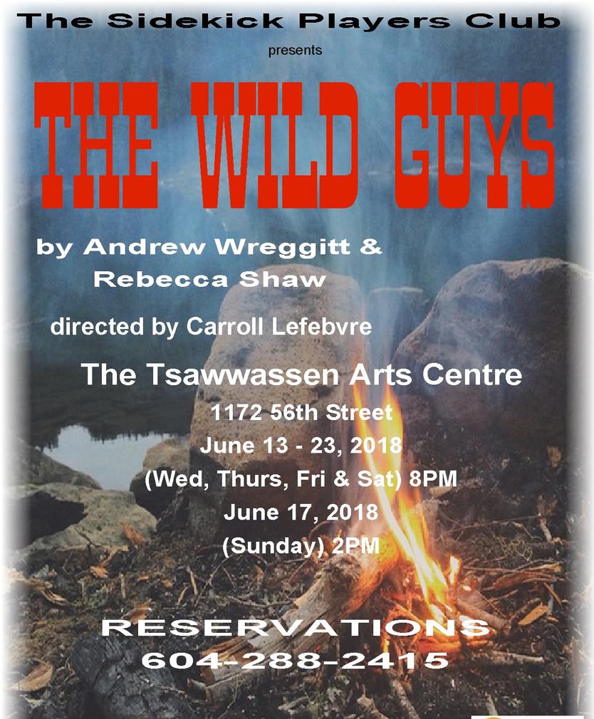 Wild Guys poster.jpg