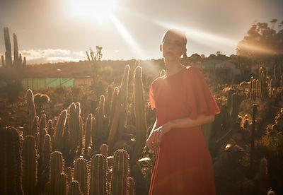 Cactus_Motiv2.jpg