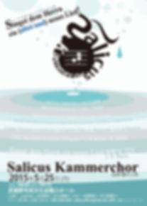 salicus_omote_03.jpg