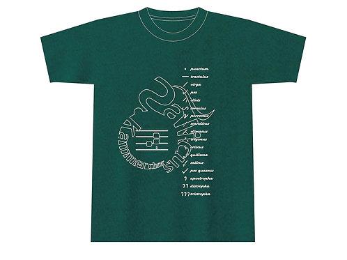 サリクスTシャツ