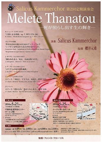 Salicus_チラシ_1.jpg