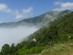 La protection des espaces naturels au profit  de la biodiversité.