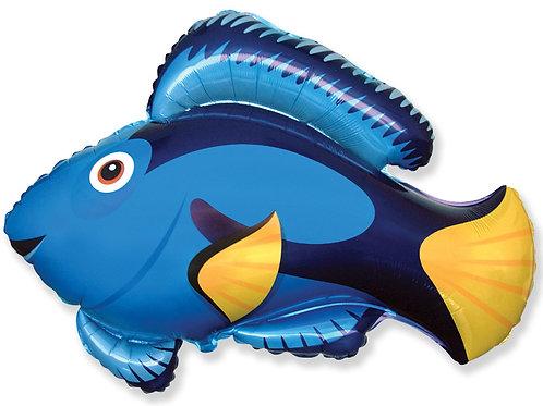 Шар Рыбка Дори