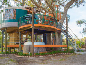 Top 5 Florida Staycations for Adventure Seekers