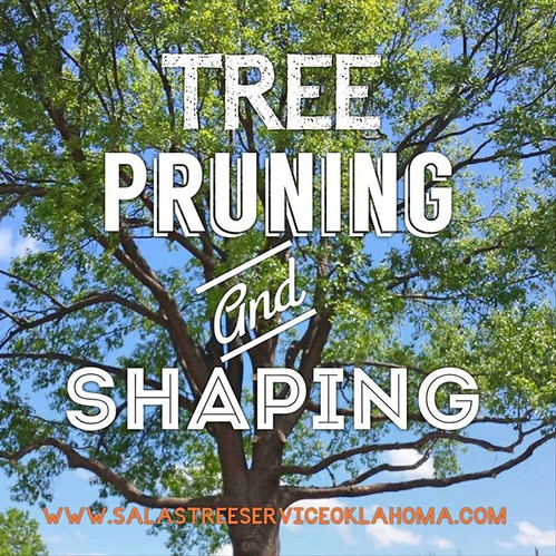 tree trimming, tree prunning