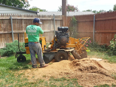 stump grinding in oklahoma city