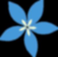 fleur_seul.png