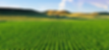 Crops.png