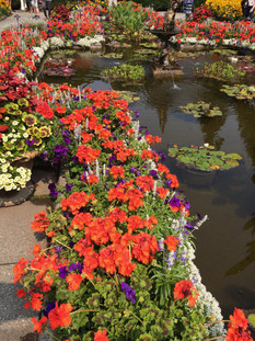 010_garden2.jpg
