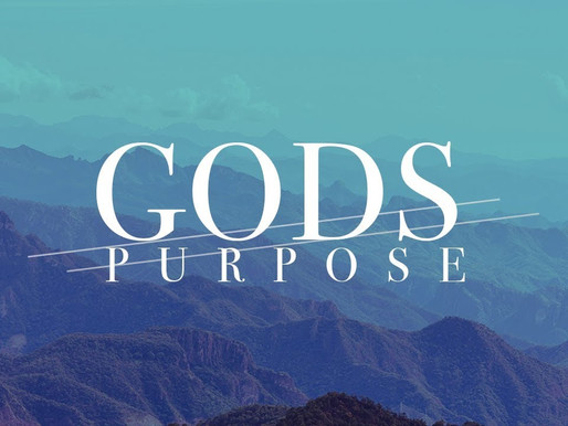 God's Purpose in Your Life
