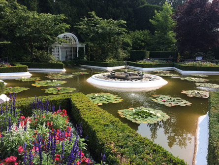 009_garden1.JPG