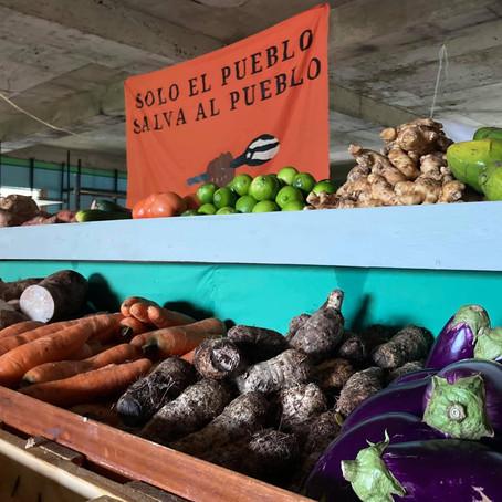 Súper Solidario Coop: apoyo mutuo del campo a la urbe