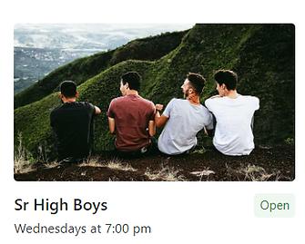Group of boys (Sr High Boys)