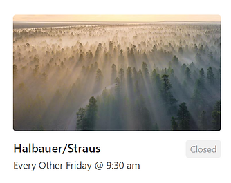 foggy treetops at sunrise (Halbauer/Straus group)