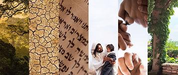 Tree, Desert, Hebrew, Jesus, Hands, Vines
