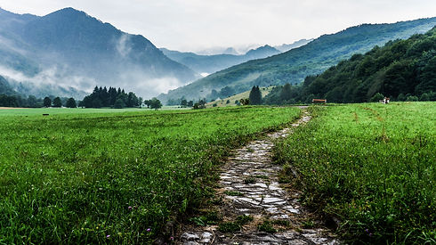path through green field leading towards misty mountains