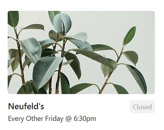 Rubber Plant (Neufeld Group)