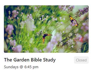 Flower Garden (Garden Bible Study)
