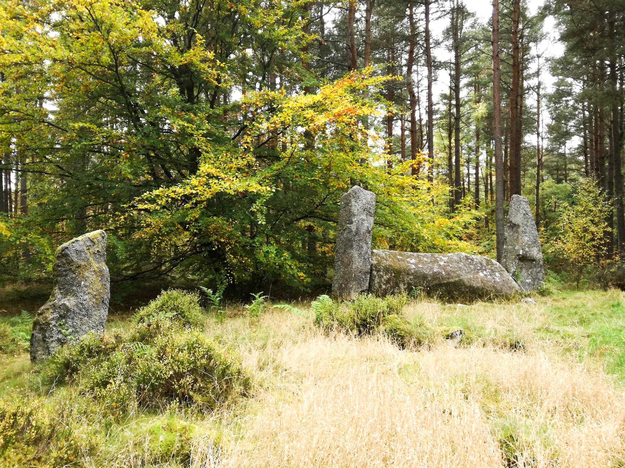 Cothiemuir Stone Circle