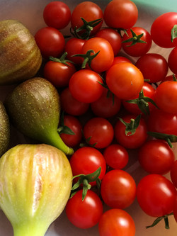Figs and tomatoes